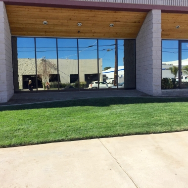 A business park in Reseda was ready to look at new, low maintenance and visually different landscape ideas from its previous, traditional shrubs and groundcovers..