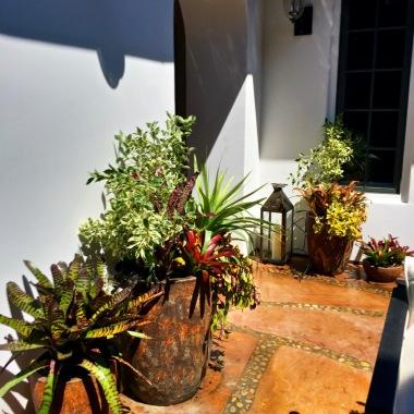 Pot layout at courtyard exit